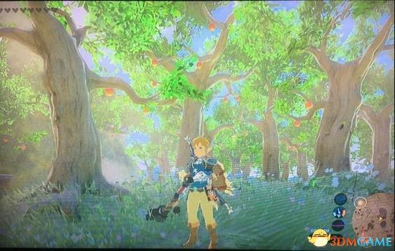 塞尔达传说荒野之息苹果树位置在哪 苹果树位置一览